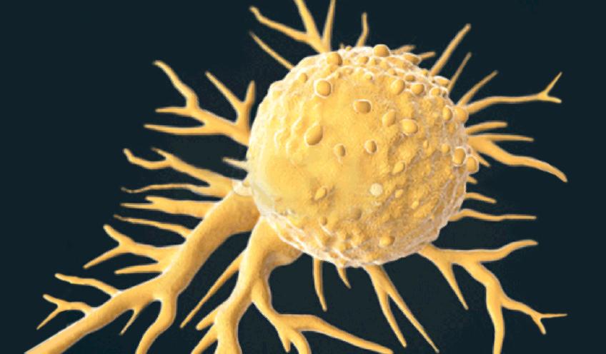 Nanotechnology in Oncology