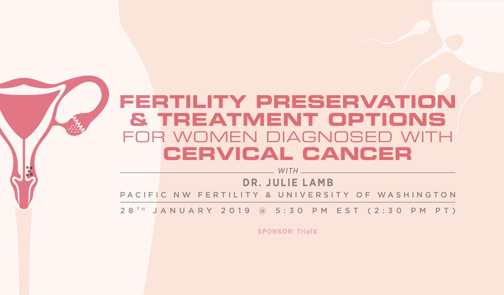 Fertility Preservation and Treatment Options for Women Diagnosed with Cervical Cancer